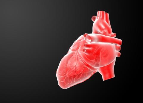 Corazón rojo 3D
