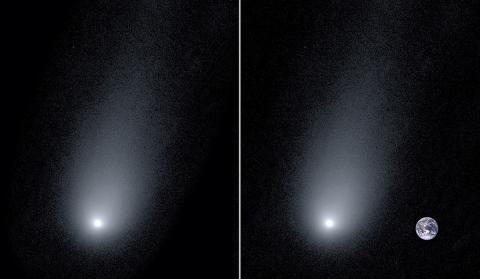 Cometa interestelar