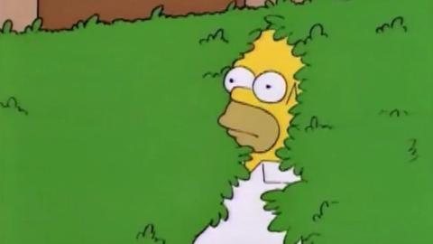 Homer seto