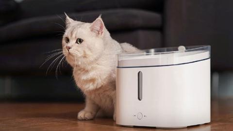 Dispensador de agua para mascotas de Xiaomi
