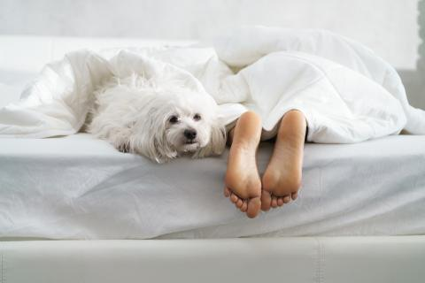 Dormir con los pies fuera de la manta