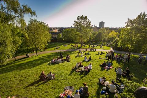 Parque en la ciudad