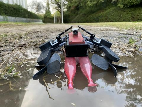 Robot anfibio