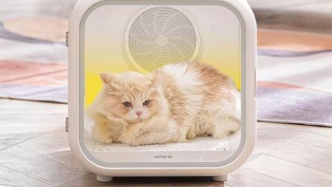 Cabina de secado perros y gatos