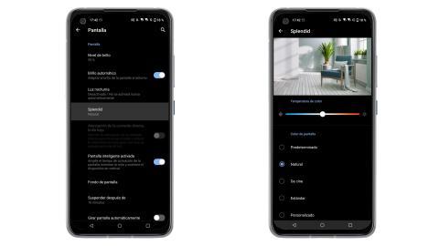 Asus ZenFone 8, análisis y opinión
