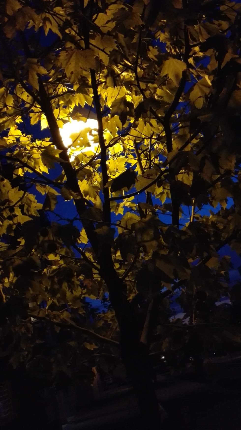 Fotografía nocturna 3