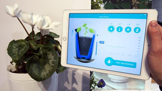 Parrot Pot en CES 2015. Es una maceta inteligente que mantiene dos litros de agua por dos kilos de tierran. Cada 15 minutos monitoriza la humedad de la tierra y te avisa en tu smartphone o tablet / Vía Reuters