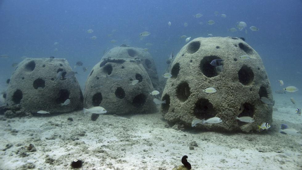 Arrecifes de coral hechos con impresoras 3D para recuperar la biodiversidad marina.