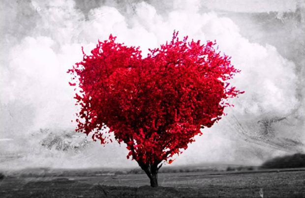 Imágenes para WhatsApp en San Valentín