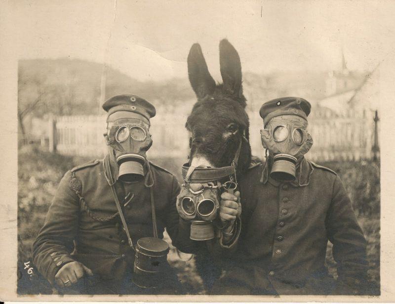 Fotografías históricas curiosas