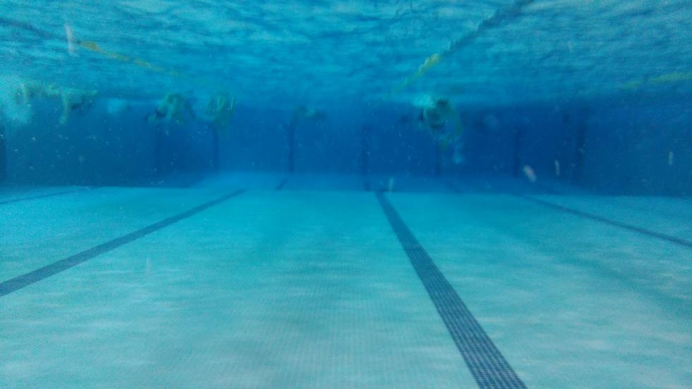 Imagen tomada bajo el agua con la cámara acuática del Alcatel OneTouch Go Play