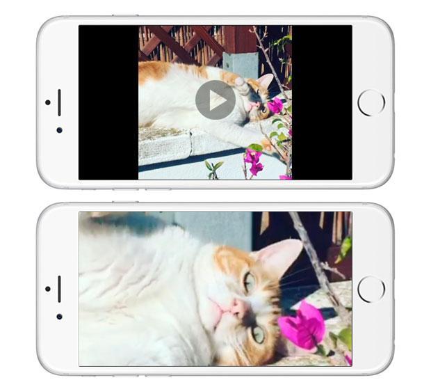 Como hacer zoom en los vídeos del iPhone mientras se reproducen
