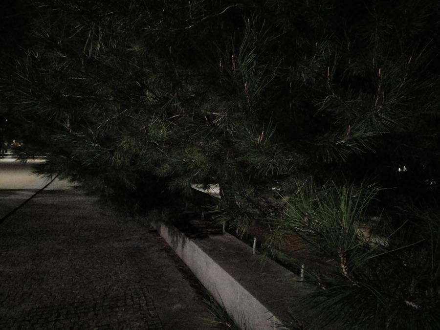 Fotografía nocturna y sin flash realizada con el Nubia Z11