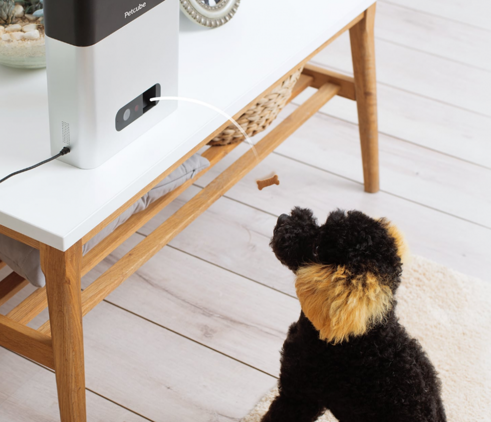 Dispensador de snacks para mascotas con WiFi